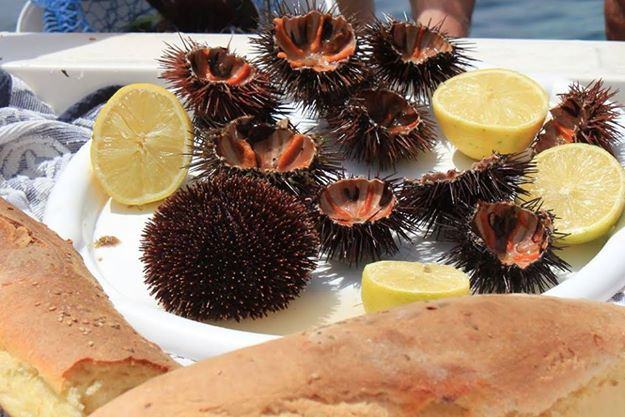 Sea urchins with Sicilian bread and lemon