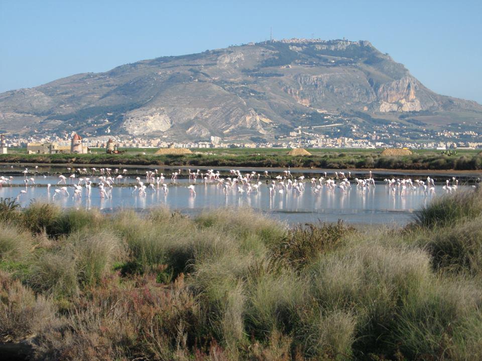 Paesaggi della provincia di Trapani: 11 panorami che ti