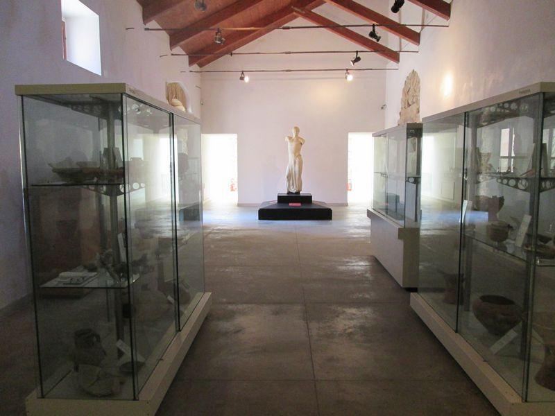 Museo Whitaker