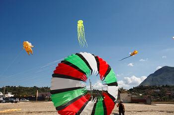Kites in Marettimo