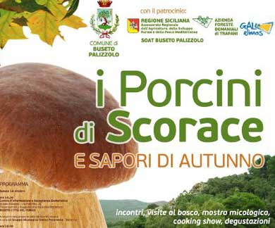 Festival of porcini mushrooms in Buseto