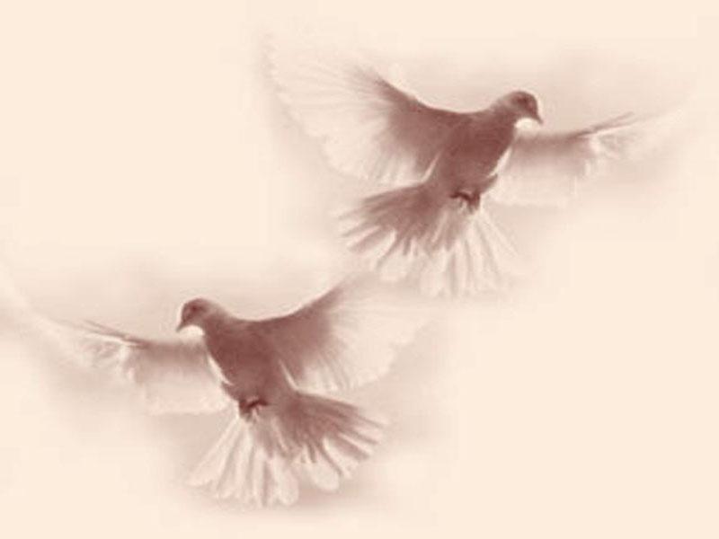 Erice: celebrato il ritorno delle colombe dal mare